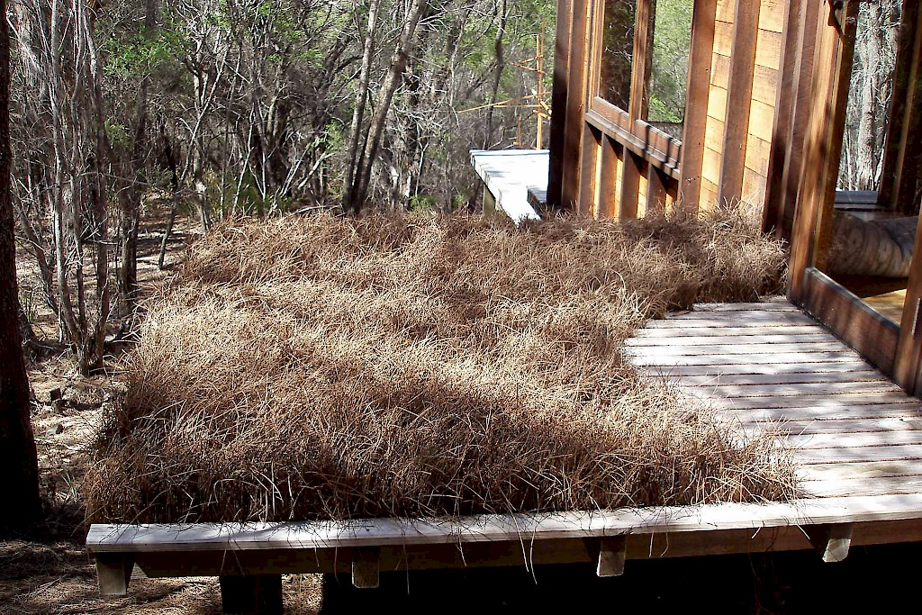 "Artwork titled ""Welcome"" (2008), consists of casaurina needles placed in the gaps between boards on a deck attached to a cabin."